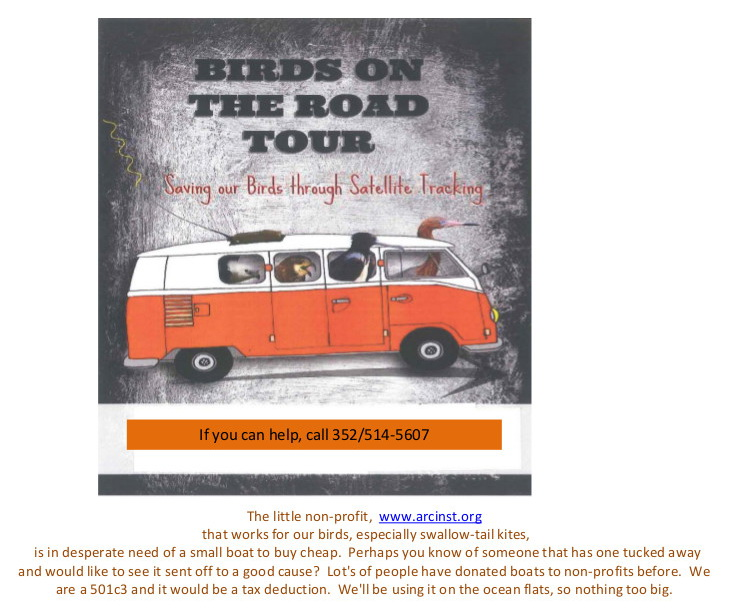 OCT 29 Birds on the road