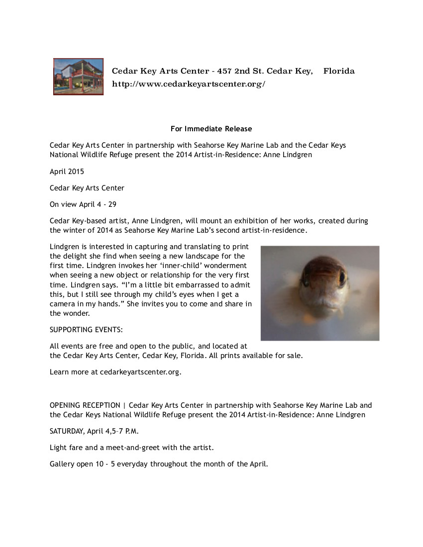 MAR 19 Artist in Residence Press Release 031315