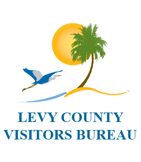 Levy Logo outline copy