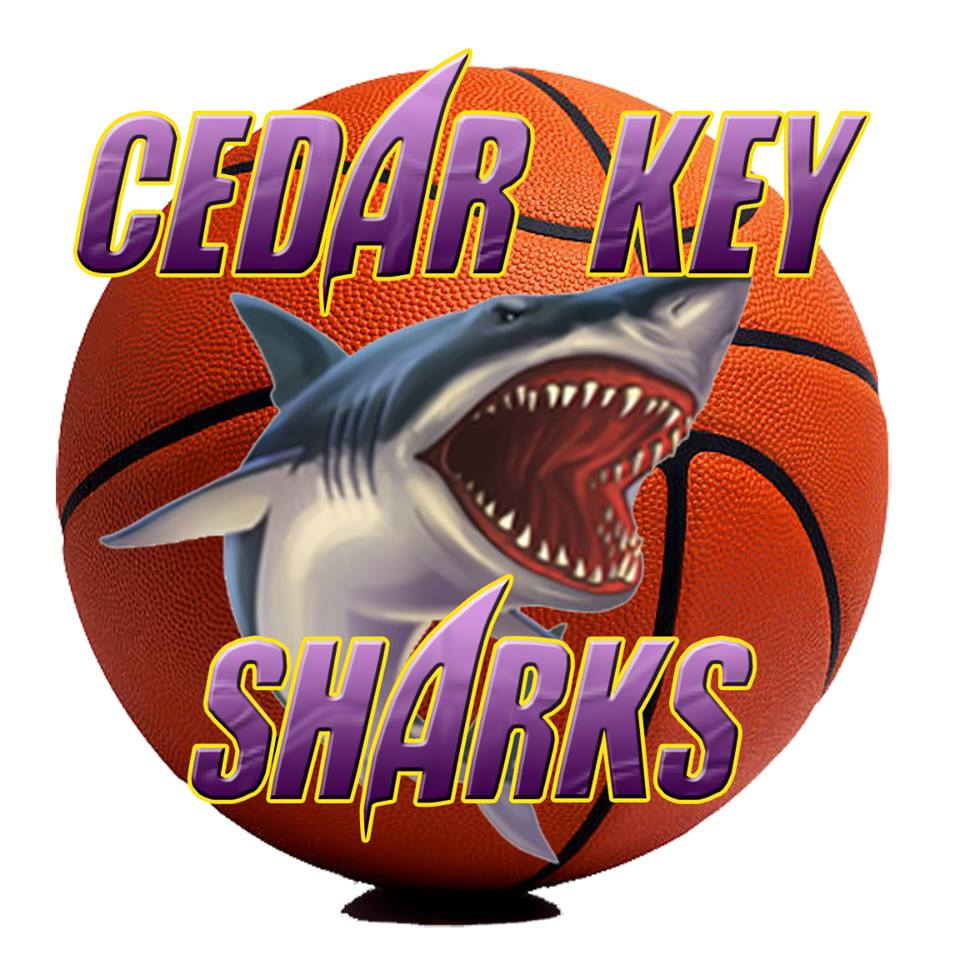 SHARK BASKETBL IMAGE
