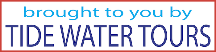TIDE WATER bottom banner